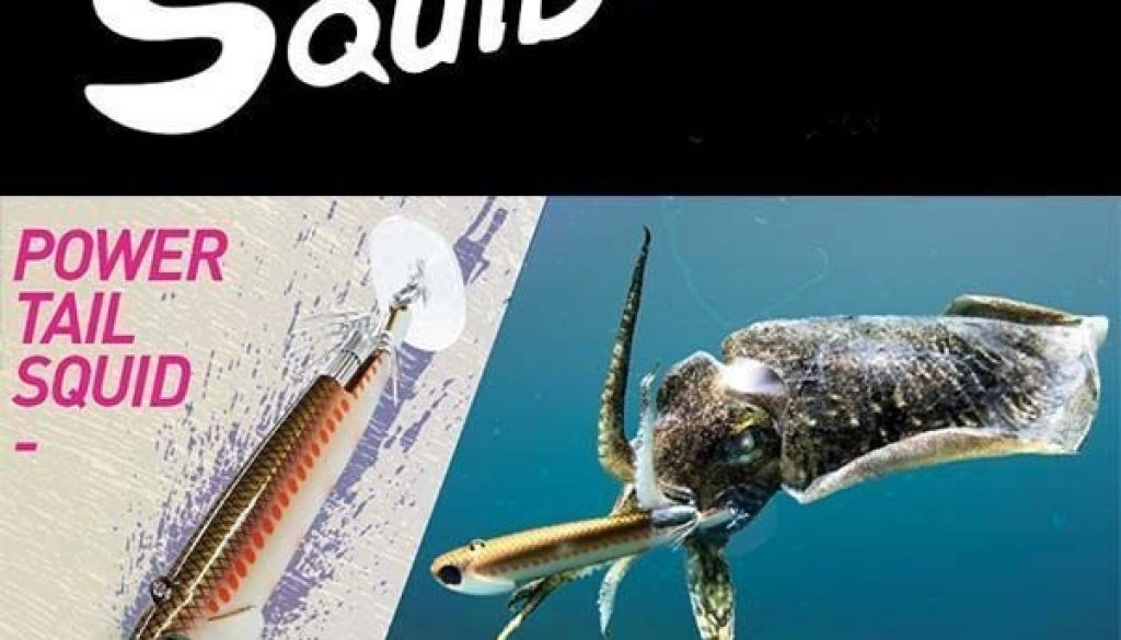 power-tail-squid-25-gr